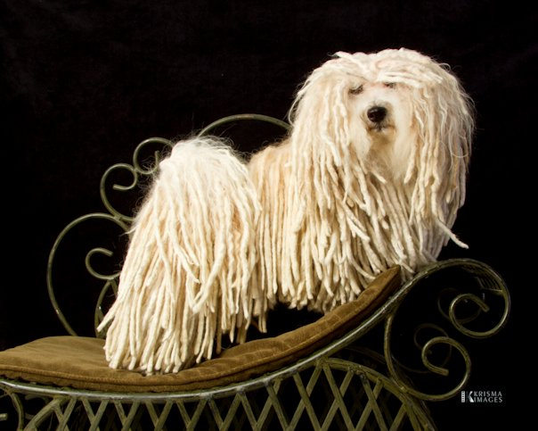 Charles at 5 years old!