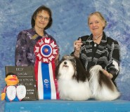 Wow Best in Show!!